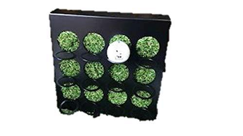 James Premium Golf-Ball Vitrine Metallrahmen schwarz mit Kunstrasen 12 Golfbälle zum Stellen und hängen - Golf-ball Vitrine