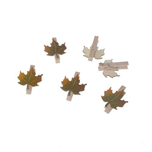 Holzklammer mit Ahornblatt - Herbstdeko - ca. 3,5x4cm - 1 VE = 36 Stück - 84125 (Halloween-basteln Mit Wäscheklammern)
