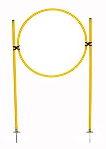 agility sport pour chiens - haie d'entraînement, jaune: 2x piquet de télescope-slalom avec une pointe rigide en acier, 1x cerceau Ø 60 cm, 2x rotule multi-fonctions - 2x Sla 1x R60y 2x SR