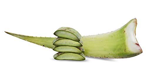 Bestes Bio Aloe Vera Blatt, Health for All
