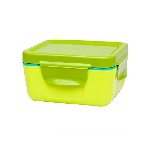 Aladdin 33389 Boîte Repas Isotherme 0,47 Litre Alimentaire en Plastique boîtes de Rangement, Fougère