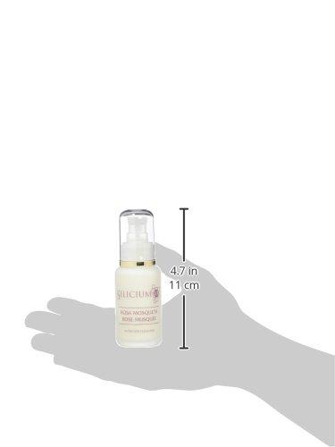 Silicium España Laboratorios Rosa Mosqueta Crema Hidratante, Antiarrugas y Antiedad – 50 ml