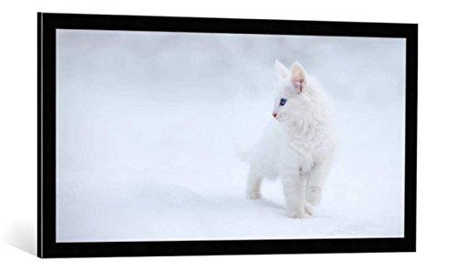 kunst für alle Bild mit Bilder-Rahmen: Esmée Prexus White as Snow - dekorativer Kunstdruck, hochwertig gerahmt, 100x50 cm, Schwarz/Kante grau (Snow White Bilderrahmen)