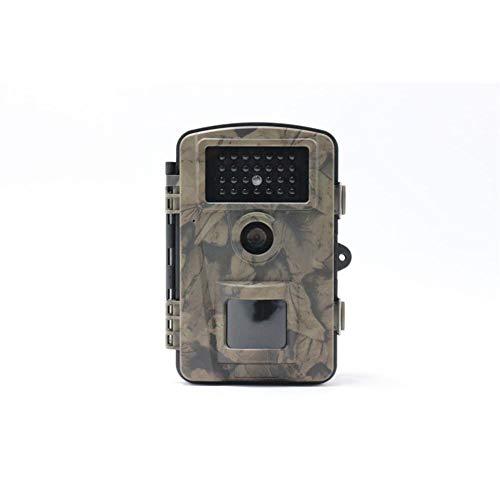 Yann Hinterjagd Wildlife-Kamera 16mp 1080p HD Überwachung Jagd Cam mit PIR-Sensor Infrarot-Nachtsichtkameras Outdoor Scouting Jäger versteckt Natur Haussicherheit