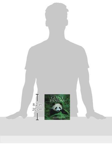 Giant Pandas (Wildlife Monographs)