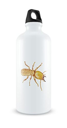 cute-termite-white-aluminim-water-bottle