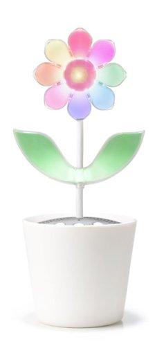 Flower Rock 2.0 (North Pole type) (japan import)