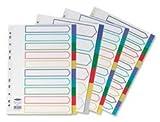 Concord Trennblätter, 10-teilig, Plastik, Polypropylen, 120 Micron, Eurolochung, A4, sortiert