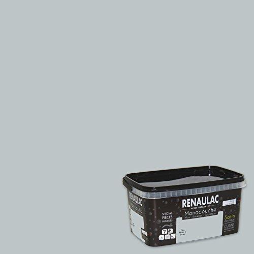 renaulac c-cms-eco-30221–2L5Fliesenlack, spezielle Feuchträume,, grau, C-CMS-ECO-30110-2L5