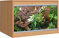 Hagen VivExotic LX24 Beech Vivarium from Hagen