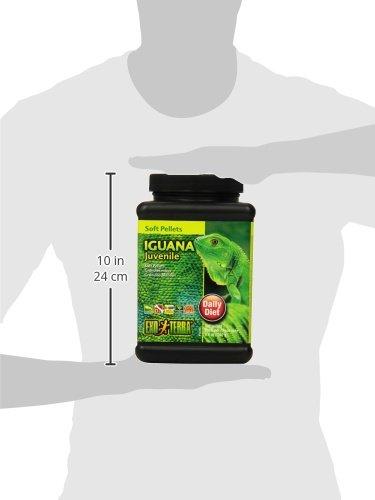 Exo Terra Soft Pellets Juvenile Iguana Food, 240 g 6