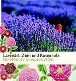 Lavendel, Zimt und Rosenholz: Die Welt der sinnlichen Düfte