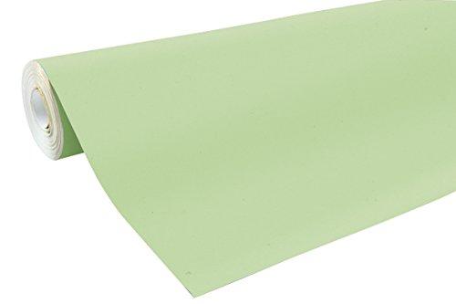 Clairefontaine 195721C Rolle-Kraftpapier Farbe, 10m x 0.70m, grün Knospe (Knospe Für Weniger)