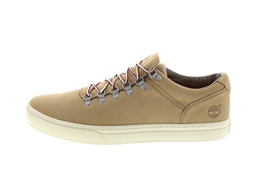 Timberland Adventure 2.0 Alpine Cupsole, Oxford Chaussures À Lacets Pour Hommes Beige