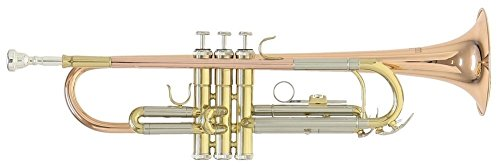 Roy Benson Bb Trompete MOD.TR-202G goldmessing lackiert, inkl. Etui