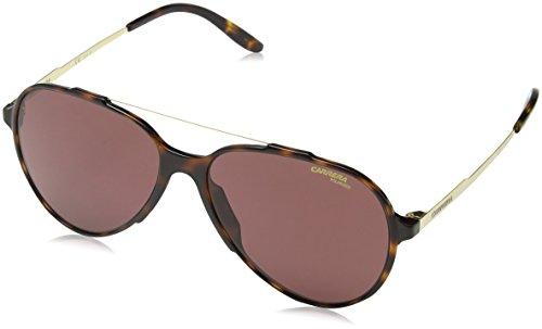 W6 VJY Sonnenbrille, (Havana Gold/Burgundy Pz AR), 57 ()