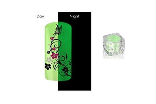 Poudre Phosphorescent Gel uv ongles - Brille la nuit - Pastel Vert REF8581
