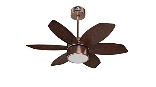 Polycab Superia Lite SP03 800mm Decorative Ceiling Fan with Remote - Brown