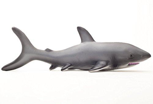 Green Rubber Toys Badespielzeug Hai aus Naturkautschuk (Spiel Hai Spiele)
