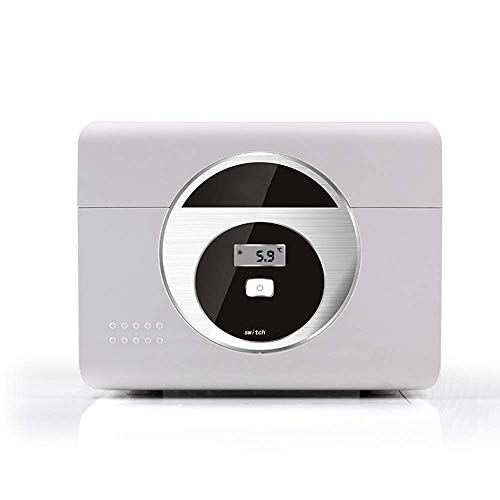 TUNBG Tragbare Mini-Kühlbox Dual Temperature Zone Design Intelligent Thermostat Kühlbox One Button Control - Grau,250 * 190 * 165 mm
