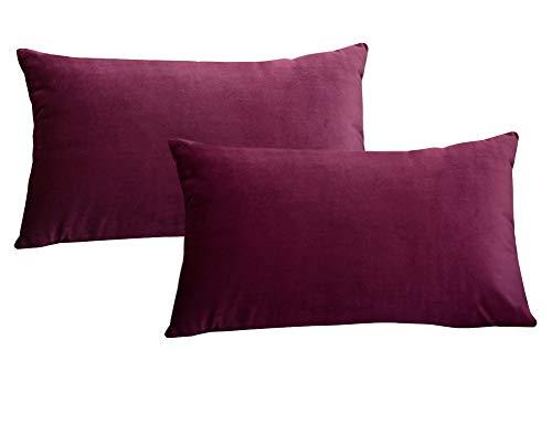 Lutanky Pack de 2 fundas de terciopelo Elegante Throw Pillow Funda de cojín suave Rectángulo sólido fundas de almohada decorativas para sofá Dormitorio Car 50 x 30 cm(Wine red,2 piezas)