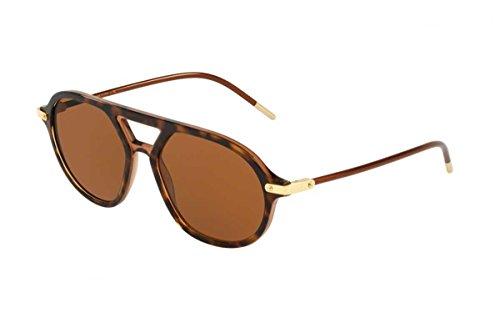 Ray-Ban Herren 318573 Sonnenbrille, Braun (Top Havana On Transparente Brown), 54