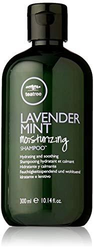 Trockenes Haar Mint Shampoo (Paul Mitchell teatree Lavender Mint Moisturizing Shampoo, 300 ml)