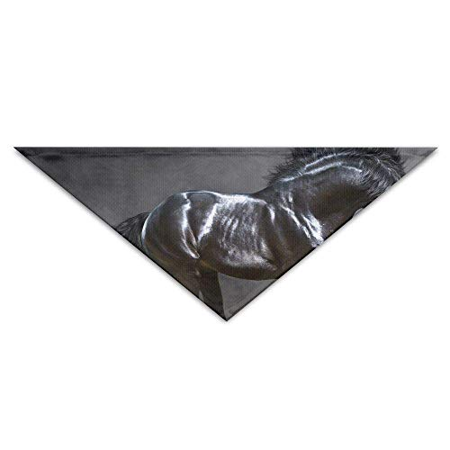 Gxdchfj Beautiful Black Horse Background Pet Dog Cat Puppy Bandana Triangle Head Scarfs Accessories (Black Horse Head Kostüm)