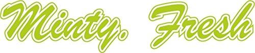 d384-minty-fresh-tuning-decal-aufkleber-shocker-jdm-oem-dub-tuning-sticker