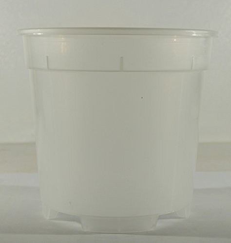vaso-transparente-en-plastico-ideal-para-las-orquideas-diametro-cm-13-envase-de-carton-de-3-piezas