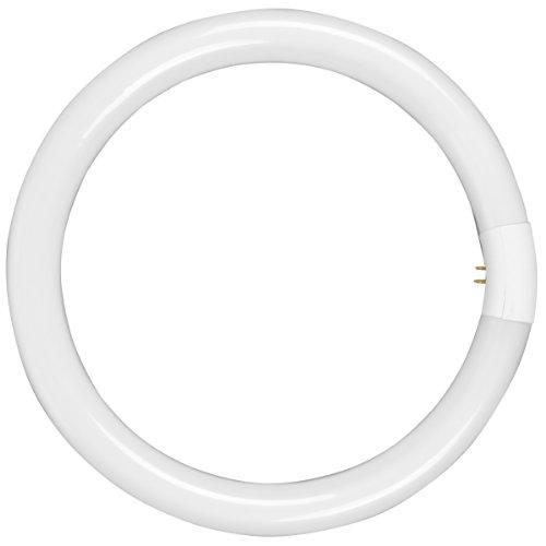 Walimex Leuchtmittel für Beauty Ringleuchte, 90 Watt, mittlere Ersatzlampe, Leistung: 28 Watt, 17070