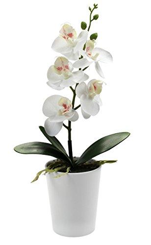 kunstpflanze-orchidee-mit-topf-m-28cm-weiss