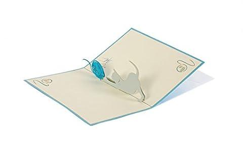 DIESE-KLAPPKARTEN® NATURE - 3D Carte POP-UP | Divers motifs |