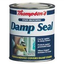 thompsons-750-ml-empeche-taches-humide-joint-detancheite