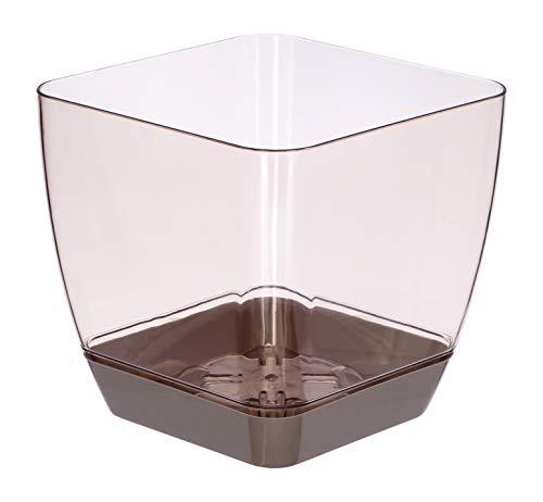 Favilla - vaso quadrato per orchidee, in plastica, effetto acrilico, sottovaso marrone - vaso trasparente crema, 5.5 in / 14 cm