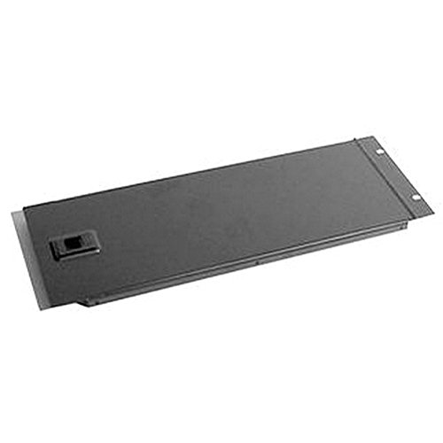 Scharnier Rack (PENN ELCOM Scharnier Rack Panel-6U massiv Gehäuse & 48,3cm Schrank Racks)