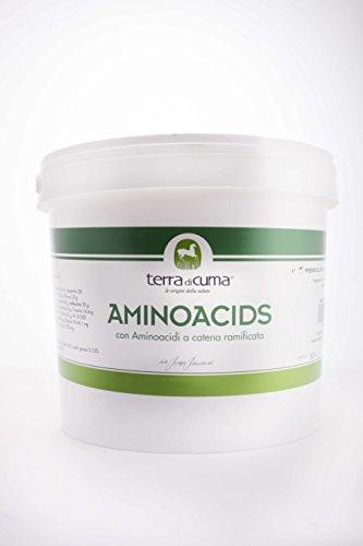 Aminoacidi per Cavalli sportivi (5 kg)