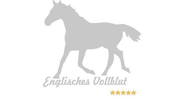 2x Auto Aufkleber Englisches Vollblut Pferd 2x Car Sticker Konturgeschnitten Ca 11x10 Cm Silber Auto