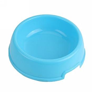 Gamelle d'Alimentation Bleu Mangeoire en Plastique de Chien Chiot Chat