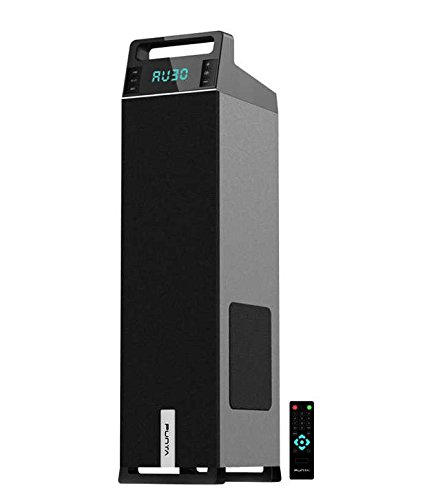 Punta Bull T1 Floor standing Speakers With Bluetooth (USB/FM/SD Slot/Remote)