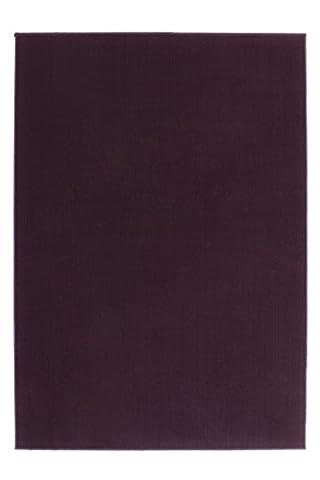 Teppich Wohnzimmer Carpet modernes Design UNI flach RUG Passage 495 Lila 80x150cm | Teppiche günstig online
