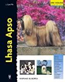 Lhasa Apso (Excellence)