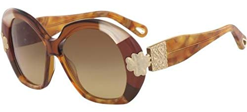 Chloé Sonnenbrillen Venus CE743S Brown/Light Brown Shaded Damenbrillen