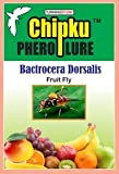 Fruit Fly Lure/pheromone attractant Lure (Fruit Fly Bactocera dorcalis) occurs in Mango, Sapota,gauva,etc