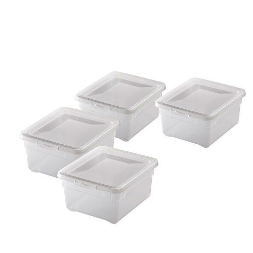 4X Rotho Schuhbox 2l Clear Box Aufbewahrungsbox stapelbar 19x16,5x9cm