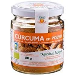 CURCUMA POLVO BIO BOTE
