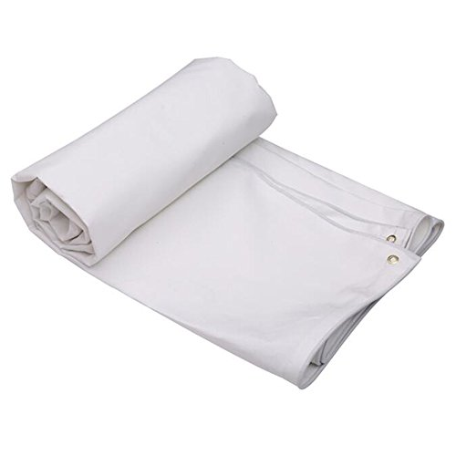 DUO Voiles d'ombrage Feuille de bâche imperméable à l'eau Tissu de pluie Abat-jour pare-poussière Carport, Polyéthylène, Épaisseur 0.5mm, 500g / m2 6 tailles (Couleur : Blanc, taille : 3 * 2m)