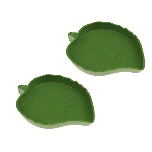 perfk Reptilien Schildkröte Futternapf Flach Trinkschale Wasserschale Terrarium Dekoration, 5 Design - Kleines Blatt