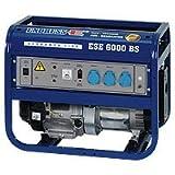 Endress ESE 6000 BS Stromerzeuger
