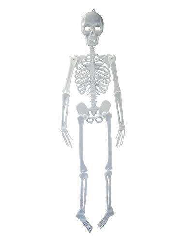 (erdbeerparty - Halloween Dekoration, Deko Skelett Leuchtet im Dunkeln 150cm, Skeleton GID Glow in The Dark, ideal für Jede Halloween Party / Feier, Weiß)